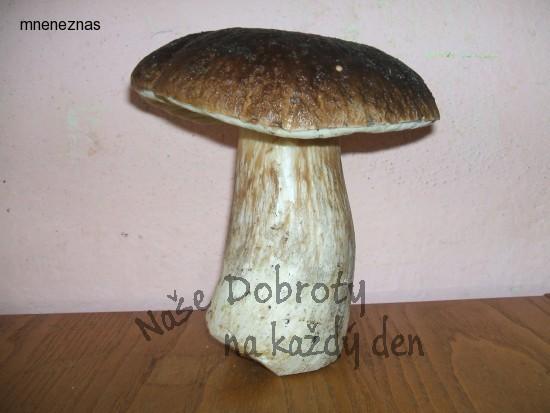 Naše houbaření