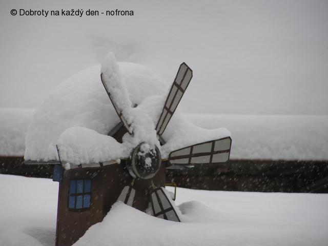 13. 2. 2013 zima a Arnica