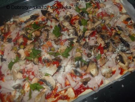 Pizza se zakysané smetany a měkkého tvarohu