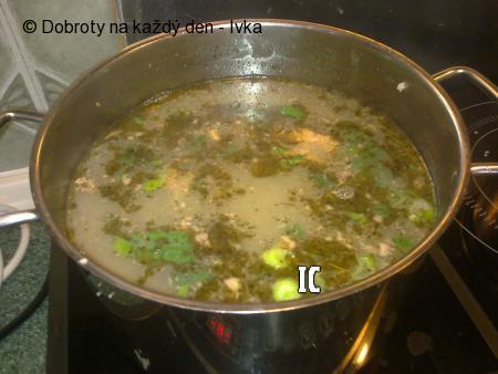 Rychlá prejtová polévka se zeleninou