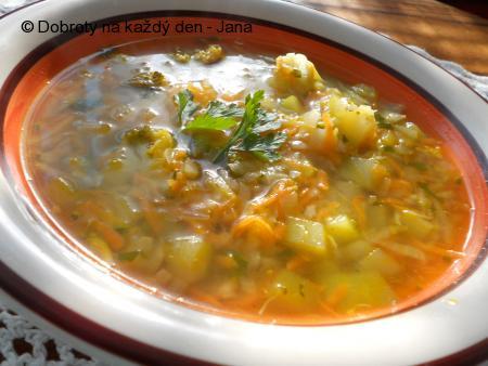 Zeleninová polévka bez zásmažky