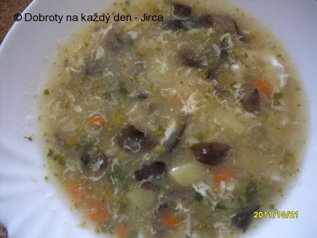 Zeleninová polévka s václavkami