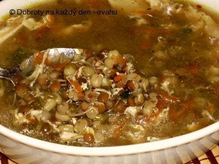 Polévka s mungo  fazolí a naklíčené čočky