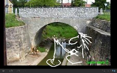 Kapr od Bošileckého mostku