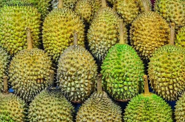 Jackfruit, chlebovník nebo durian?