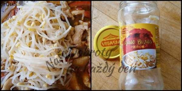 Kuřecí nudličky s klíčky a paprikou